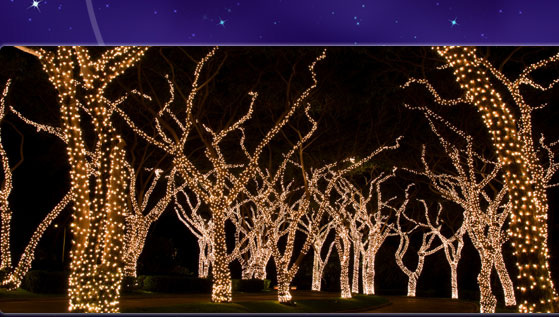 HolidayLightService.com   Commercial And Residential Holiday Light Services    Proudly Serving SF Bay Area, Sacramento, U0026 Los Angeles